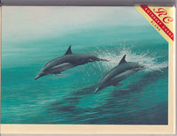 Dolphins Greetings Card - David Lawrence