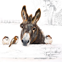 Donkey And Birds Greetings Card - Pollyanna Pickering