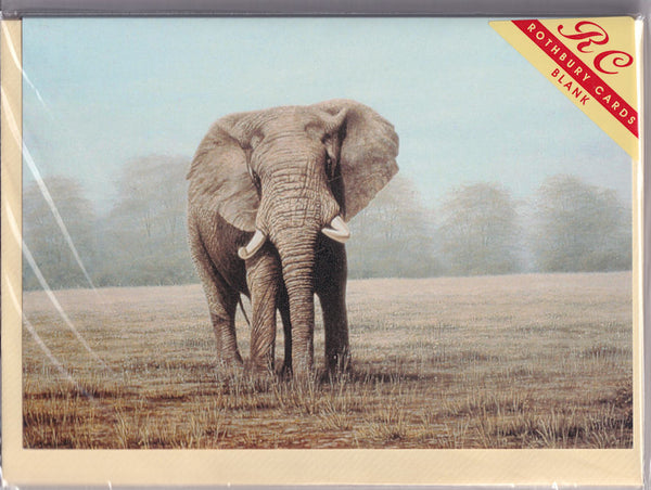 Elephant Greetings Card - David J. Lawrence