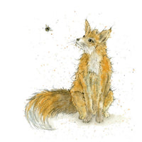 Fergus Fox Pencil Collection Greetings Card - Sarah Boddy