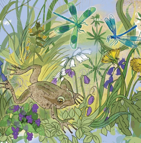 Frog And Flowers Greetings Card - Shelly Perkins