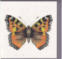 Butterfly Pencil Collection Greetings Card - Sarah Boddy