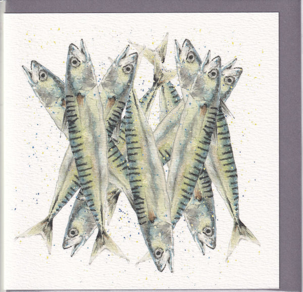 Sardines Pencil Collection Greetings Card - Sarah Boddy