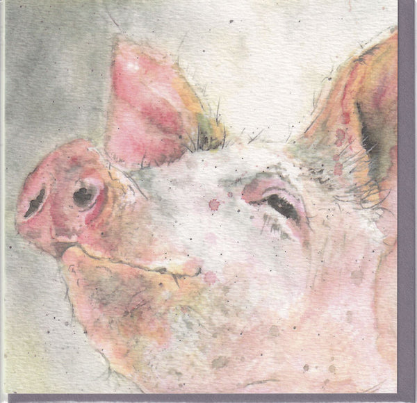 Pig Greetings Card - Sarah Boddy