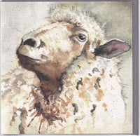 Sheep Greetings Card - Sarah Boddy