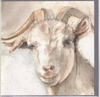 Goat Greetings Card - Sarah Boddy