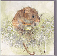 Harvest Mouse Greetings Card - Sarah Boddy