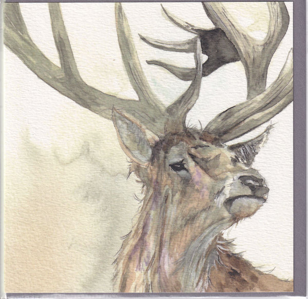 Forest Stag Greetings Card - Sarah Boddy