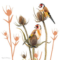 Goldfinch Birds Greetings Card - Pollyanna Pickering