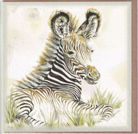 Grevy's Zebra Greetings Card - Sally Anson