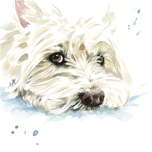 Hamish The West Highland White Terrier Greetings Card - Louise Nisbet