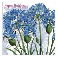 Happy Birthday Agapanthus Flowers Greetings Card - Caroline Cleave