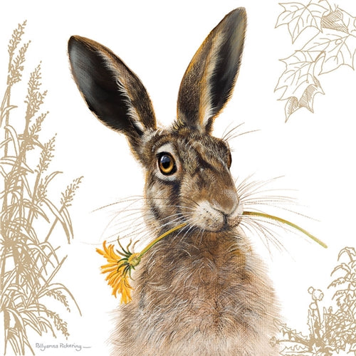 Hare And Sunflower Greetings Card - Pollyanna Pickering