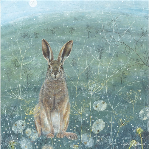 Hare Greetings Card - Anne Mortimer