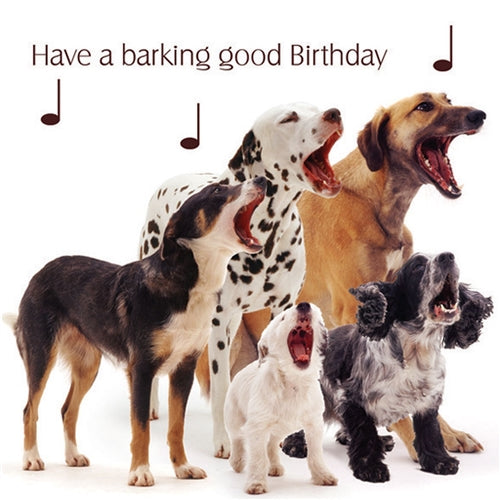 Have A Barking Good Birthday Dogs Birthday Card