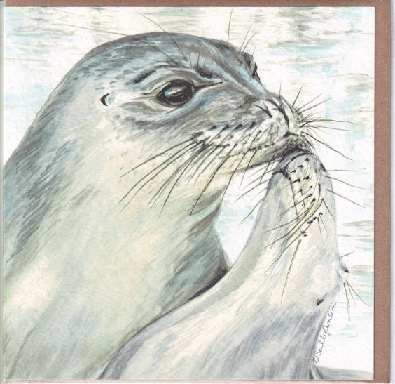 Hawaiian Monk Seals Greetings Card - Sally Anson