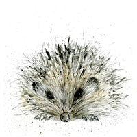 Hedgehog Pencil Collection Greetings Card - Sarah Boddy