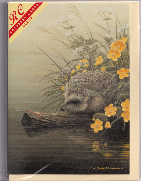 Hedgehog Greetings Card - David J. Lawrence