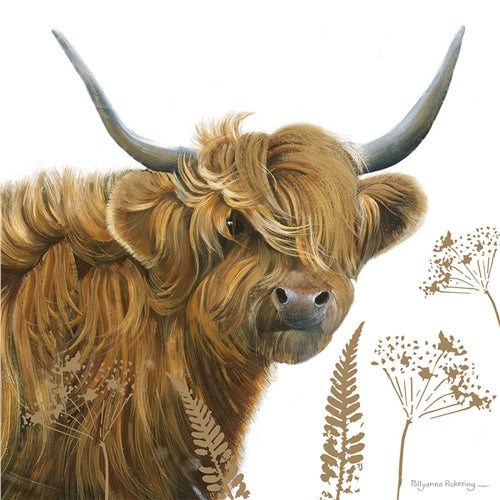 Highland Cow Greetings Card - Pollyanna Pickering