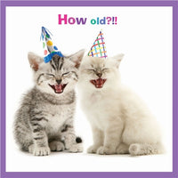 How Old?!! Birthday Card - kittens cats