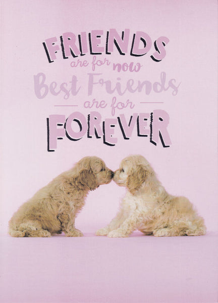 Friends Are For Now Best Friends Are For Forever Happy Birthday Card