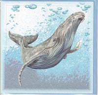 Humpback Whale Greetings Card - Sally Anson