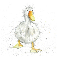 Jemima Duck Pencil Collection Greetings Card - Sarah Boddy