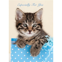 Kitten In A Box Birthday Card