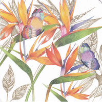 Bird Of Paradise Flowers Glitter Greetings Card - Nigel Quiney