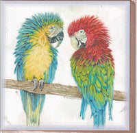 Macaw Parrots Greetings Card - Sally Anson