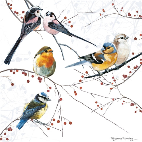 Mixed Birds Greetings Card - Pollyanna Pickering
