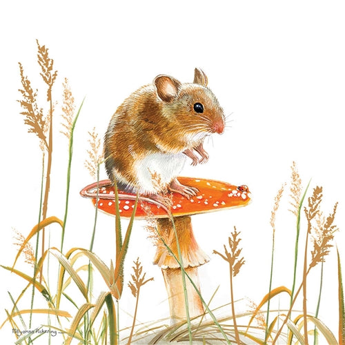 Mouse On A Toadstool Greetings Card - Pollyanna Pickering