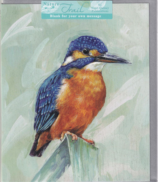 Kingfisher Bird Greetings Card - Nigel Quiney
