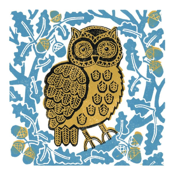 Owl In The Acorns Greetings Card - Susie Lacome