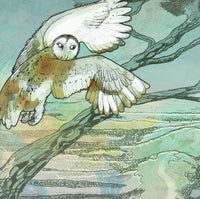Owl Twilight Flight Greetings Card - Shelly Perkins