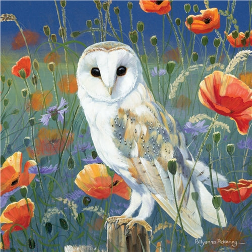 Owl Watching And Waiting Greetings Card - Pollyanna Pickering