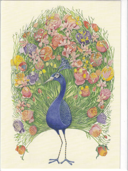 Peacock Greetings Card - Daniel Mackie