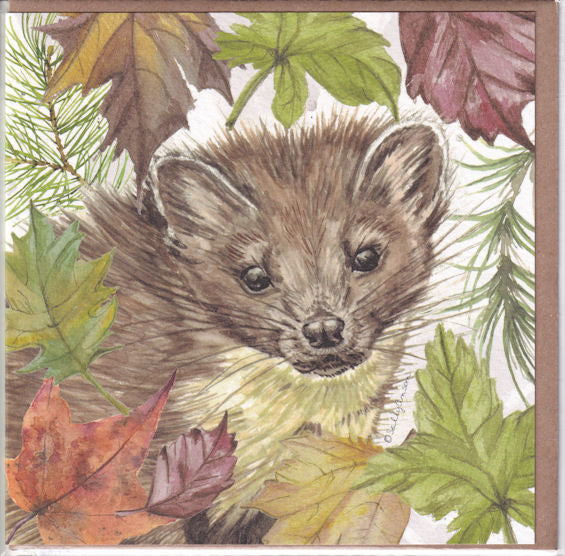 Pine Marten Greetings Card - Sally Anson