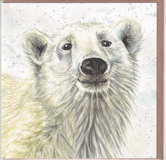 Polar Bear Greetings Card - Sally Anson