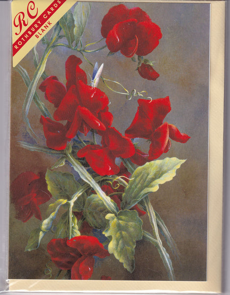 Red Sweet Pea Flowers Greetings Card - Sonya Marshall