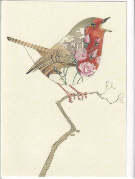 Robin Bird Greetings Card - Daniel Mackie
