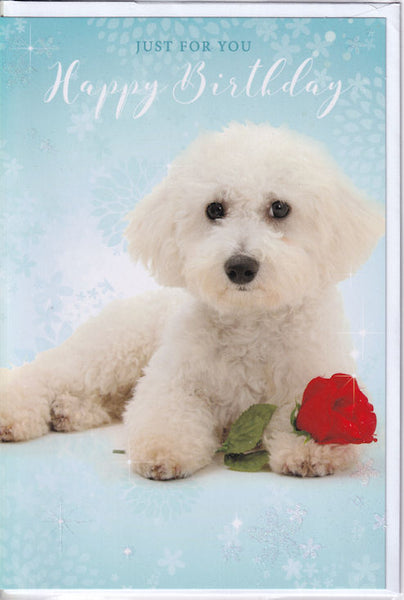 Poodle Puppy Dog Happy Birthday Glitter Card