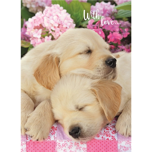 Sleeping Pups With Love Birthday Card