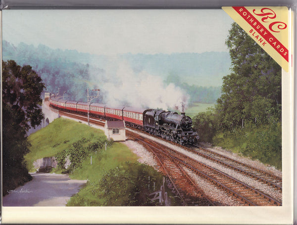 The Pines Express Steam Train At Midford Greetings Card - John Austin