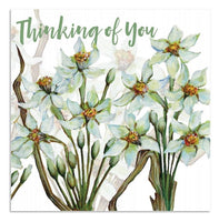 Thinking Of You Paperwhite Narcissus Greetings Card - Caroline Cleave