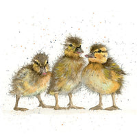 Three Ducklings Pencil Collection Greetings Card - Sarah Boddy