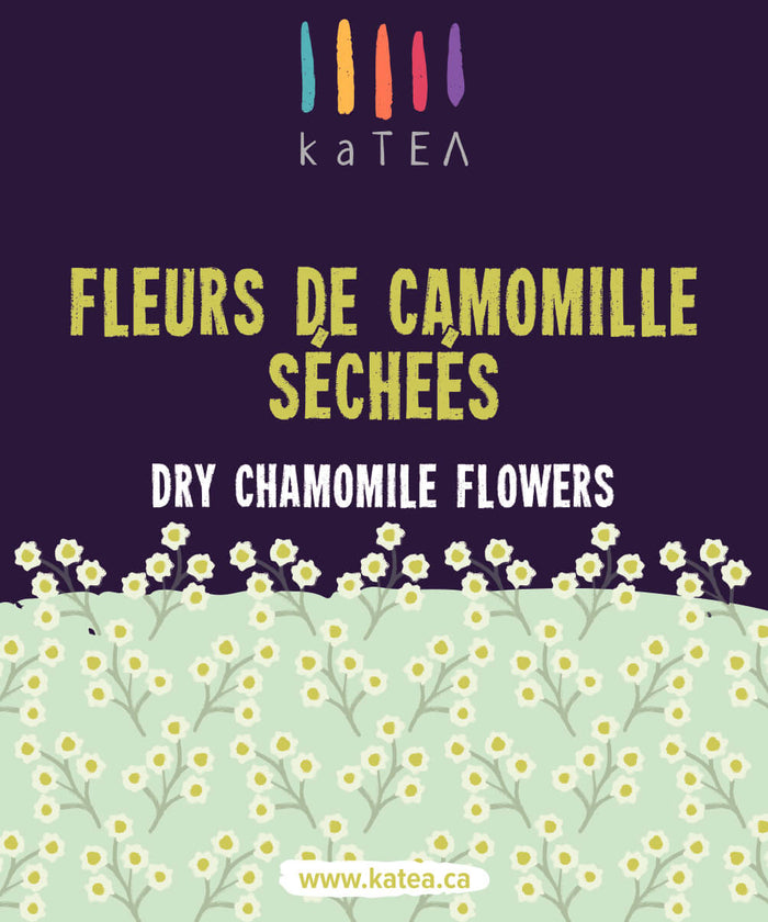 Buy Dried Chamomile Flowers For the Best Chamomile Tea