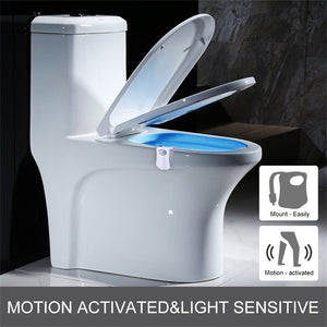 Motion Sensor Night Toilet Bowl Light - Infant Kingdom