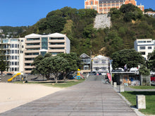 Load image into Gallery viewer, Gelissimo @ Freyberg - Oriental Bay