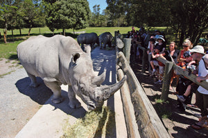 Orana Wildlife Park - Christchurch